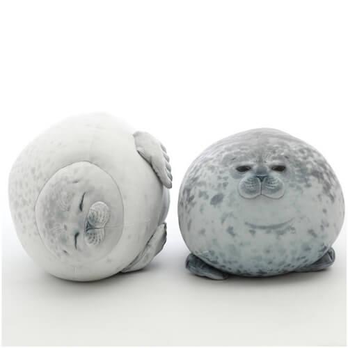 seal ocean animals